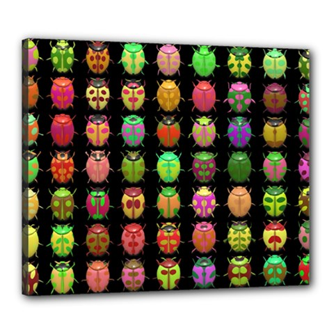 Beetles Insects Bugs Canvas 24  X 20