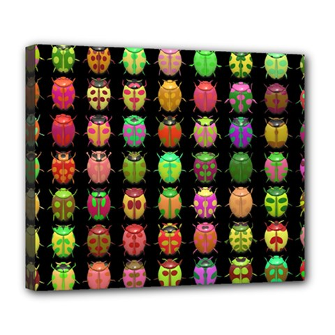 Beetles Insects Bugs Deluxe Canvas 24  X 20   by BangZart