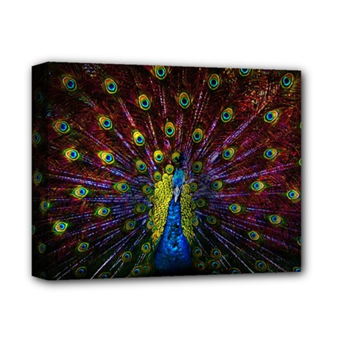 Beautiful Peacock Feather Deluxe Canvas 14  X 11  by BangZart
