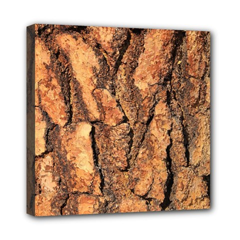 Bark Texture Wood Large Rough Red Wood Outside California Mini Canvas 8  X 8  by BangZart