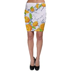 Fruits Water Vegetables Food Bodycon Skirt