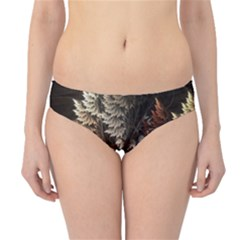 Fractalius Abstract Forests Fractal Fractals Hipster Bikini Bottoms
