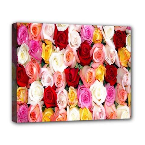 Rose Color Beautiful Flowers Deluxe Canvas 20  X 16