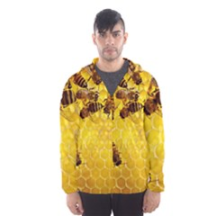 Honey Honeycomb Hooded Wind Breaker (men)