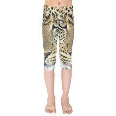 Leopard Face Kids  Capri Leggings