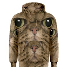 Cute Persian Catface In Closeup Men s Pullover Hoodie
