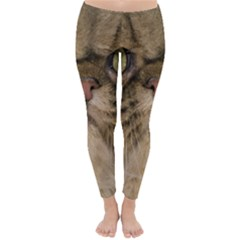 Cute Persian Catface In Closeup Classic Winter Leggings