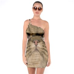 Cute Persian Catface In Closeup One Soulder Bodycon Dress