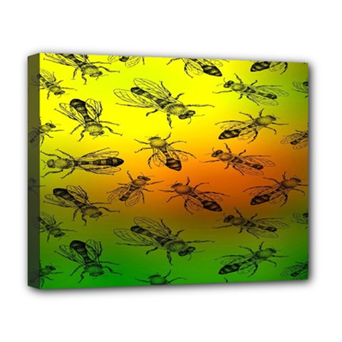 Insect Pattern Deluxe Canvas 20  X 16