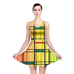 Line Rainbow Grid Abstract Reversible Skater Dress
