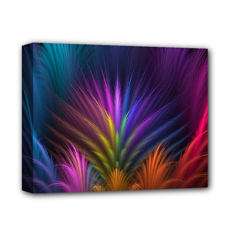 Colored Rays Symmetry Feather Art Deluxe Canvas 14  X 11  by BangZart