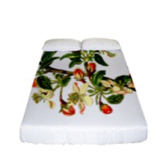 Apple Branch Deciduous Fruit Fitted Sheet (full/ Double Size)