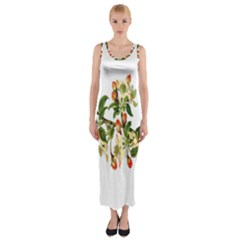 Apple Branch Deciduous Fruit Fitted Maxi Dress