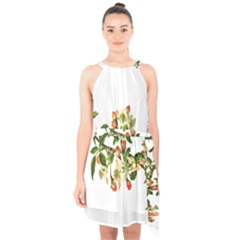 Apple Branch Deciduous Fruit Halter Collar Waist Tie Chiffon Dress