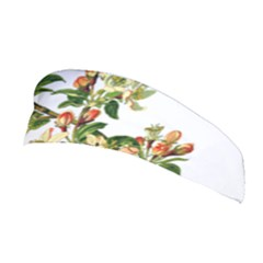 Apple Branch Deciduous Fruit Stretchable Headband