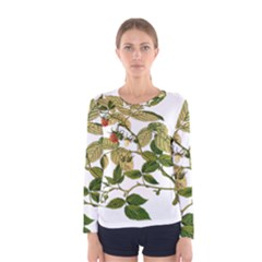 Berries Berry Food Fruit Herbal Women s Long Sleeve Tee