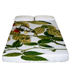 Berries Berry Food Fruit Herbal Fitted Sheet (king Size)