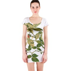 Berries Berry Food Fruit Herbal Short Sleeve Bodycon Dress