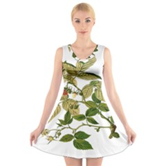 Berries Berry Food Fruit Herbal V Neck Sleeveless Skater Dress