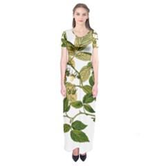 Berries Berry Food Fruit Herbal Short Sleeve Maxi Dress