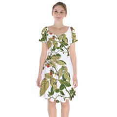 Berries Berry Food Fruit Herbal Short Sleeve Bardot Dress