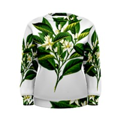 Bitter Branch Citrus Edible Floral Women s Sweatshirt