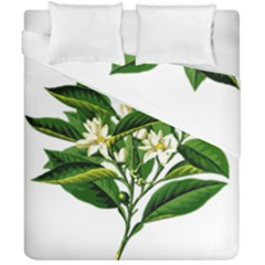 Bitter Branch Citrus Edible Floral Duvet Cover Double Side (california King Size) by Nexatart