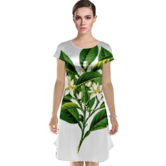 Bitter Branch Citrus Edible Floral Cap Sleeve Nightdress