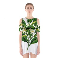 Bitter Branch Citrus Edible Floral Shoulder Cutout One Piece
