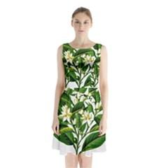 Bitter Branch Citrus Edible Floral Sleeveless Waist Tie Chiffon Dress