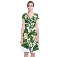 Bitter Branch Citrus Edible Floral Short Sleeve Front Wrap Dress