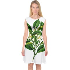 Bitter Branch Citrus Edible Floral Capsleeve Midi Dress