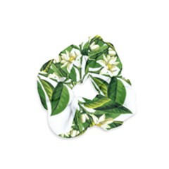 Bitter Branch Citrus Edible Floral Velvet Scrunchie