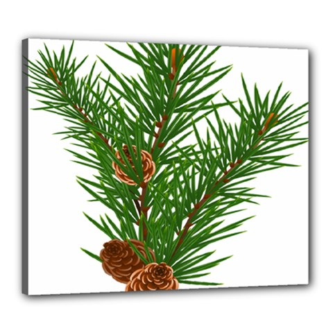 Branch Floral Green Nature Pine Canvas 24  X 20