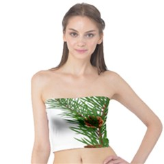 Branch Floral Green Nature Pine Tube Top