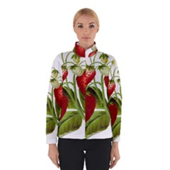 Food Fruit Leaf Leafy Leaves Winterwear