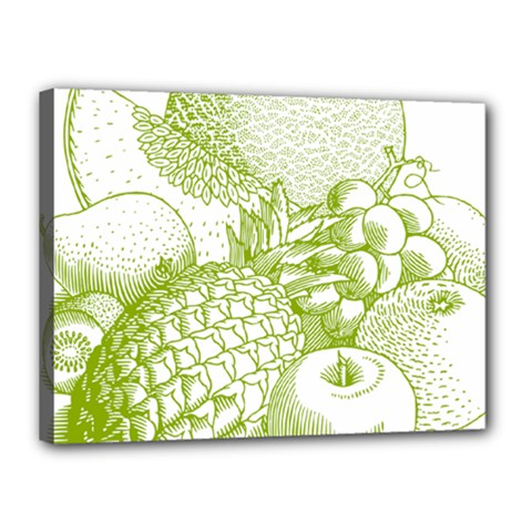 Fruits Vintage Food Healthy Retro Canvas 16  X 12