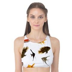 Goldfish Tank Bikini Top