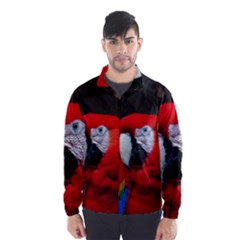 Scarlet Macaw Bird Wind Breaker (men)
