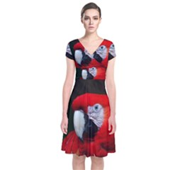 Scarlet Macaw Bird Short Sleeve Front Wrap Dress