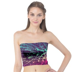 Just A Stargazer Tube Top