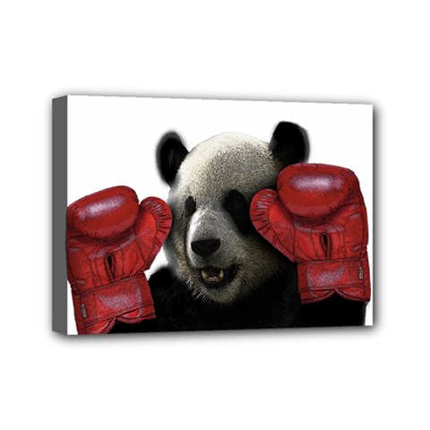 Boxing Panda  Mini Canvas 7  X 5  by Valentinaart