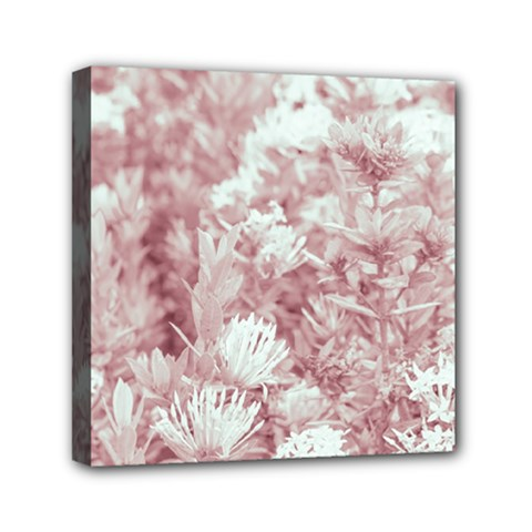 Pink Colored Flowers Mini Canvas 6  X 6  by dflcprints