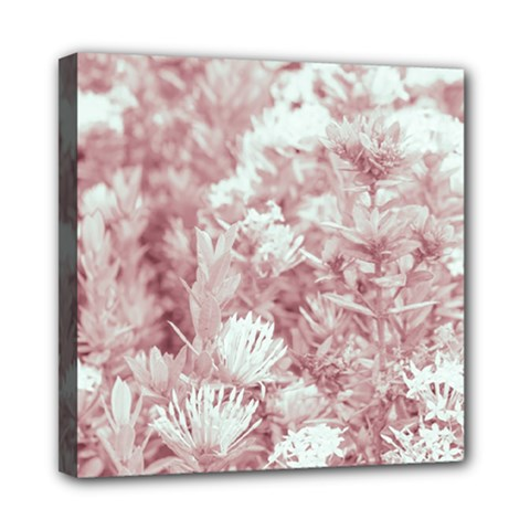 Pink Colored Flowers Mini Canvas 8  X 8  by dflcprints