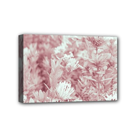 Pink Colored Flowers Mini Canvas 6  X 4  by dflcprints