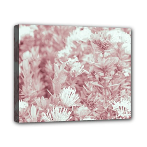 Pink Colored Flowers Canvas 10  X 8  by dflcprints