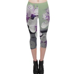 Branch Flowering Cherry Spring  Capri Leggings  by amphoto