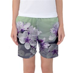 Branch Flowering Cherry Spring  Women s Basketball Shorts by amphoto
