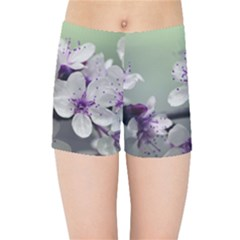 Branch Flowering Cherry Spring  Kids Sports Shorts by amphoto
