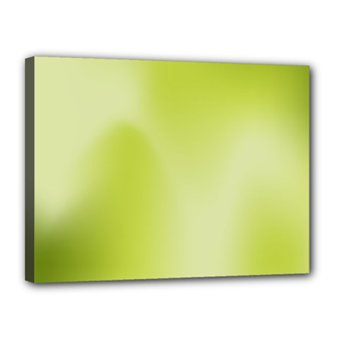 Green Soft Springtime Gradient Canvas 16  X 12